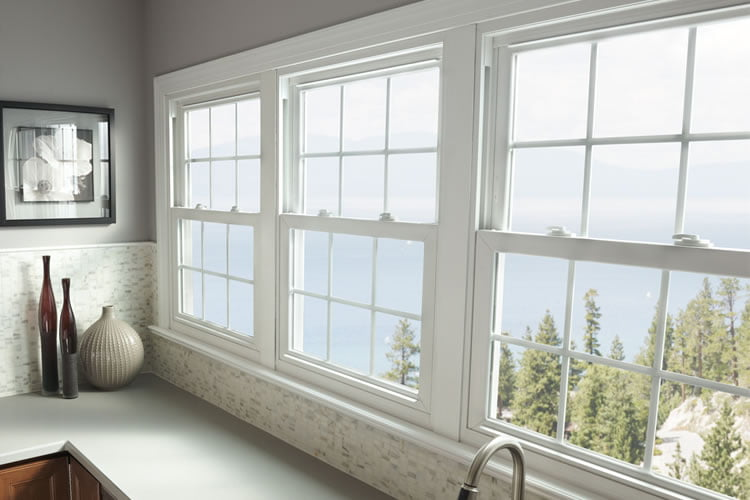 Retrofit windows replacement windows ebay with simple for Cheap home windows